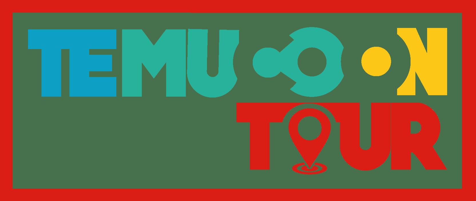temuco-on-tour